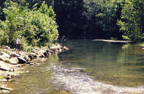 Roaring river state park for Roaring river fishing hours