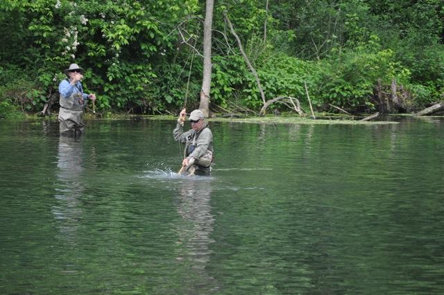 how 39 s fishing