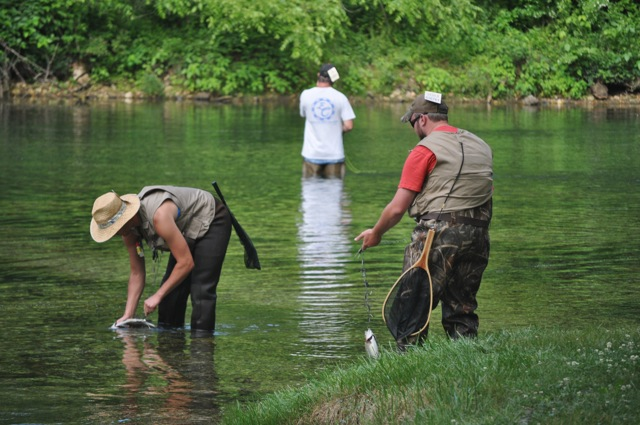 Quote of the week for Bennett springs trout fishing