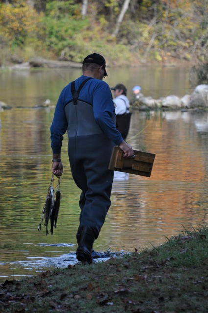 What 39 s working at bennett for Bennett springs trout fishing