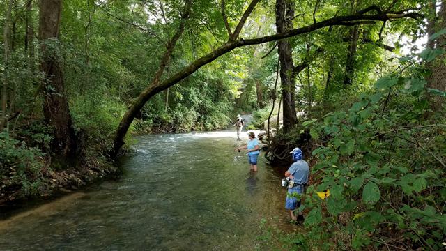 Bennett Spring State Park Fishing Report